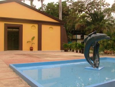 El Zoo Aquarium de Valencia y sus toninas