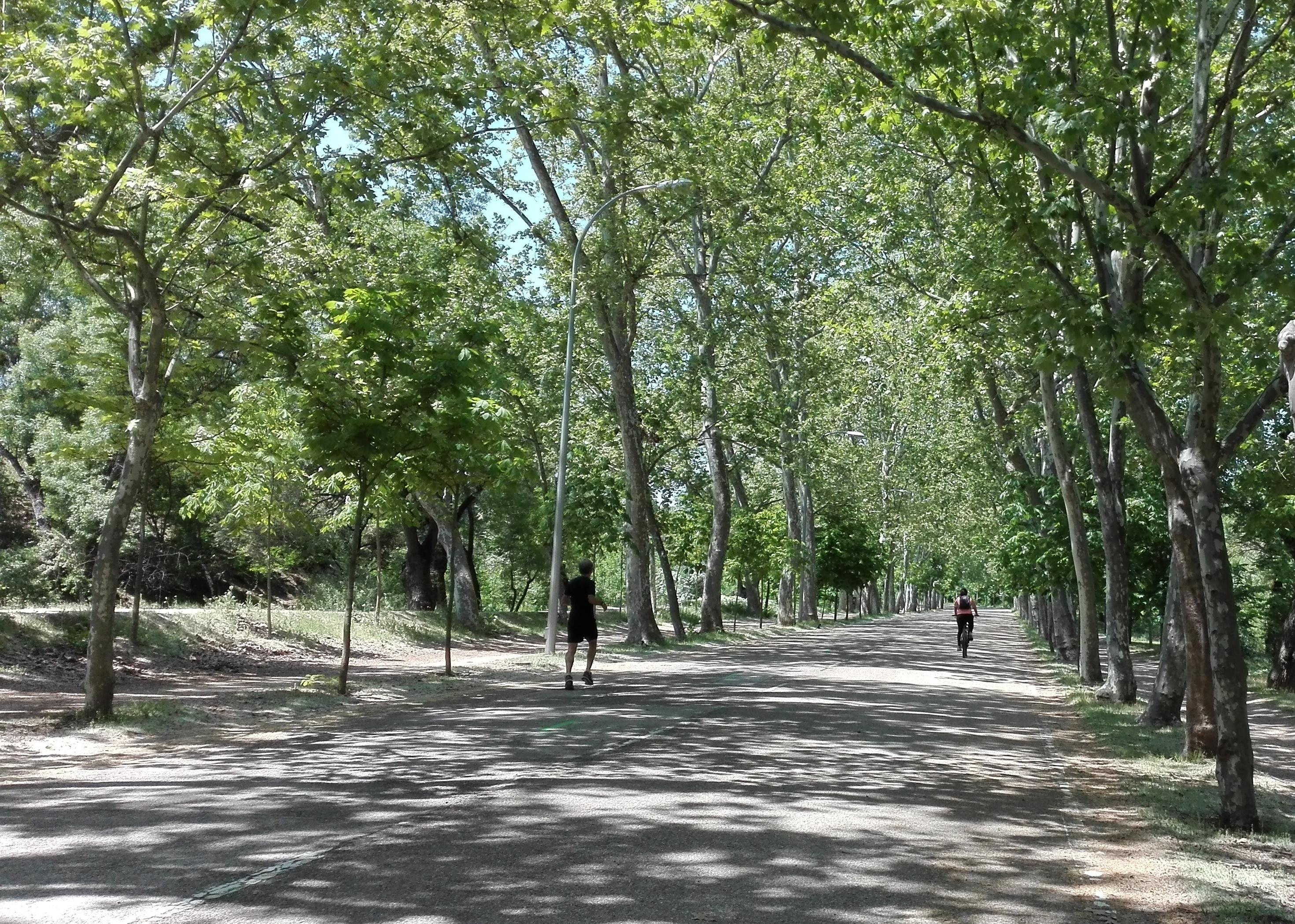 Una chuli ciclo ruta en Casa de Campo
